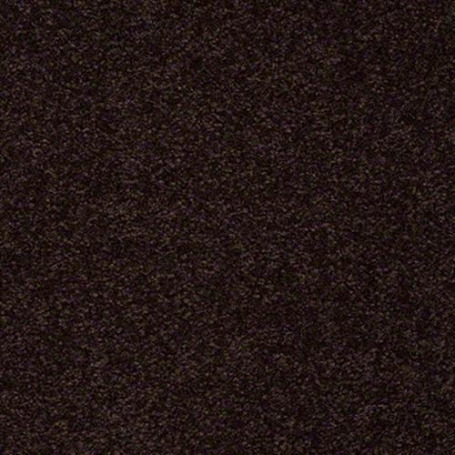 Passageway III 12 Dark Roast 00709