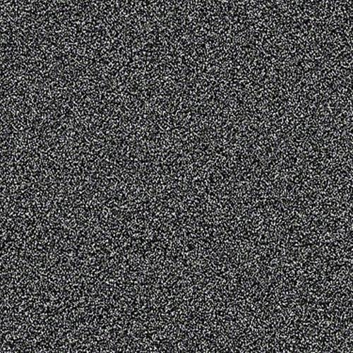 VIRTUAL GLOSS Bison 00515