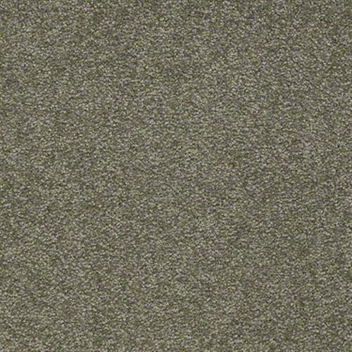 Sandy Hollow Classic IV 15 Alpine Fern 00305
