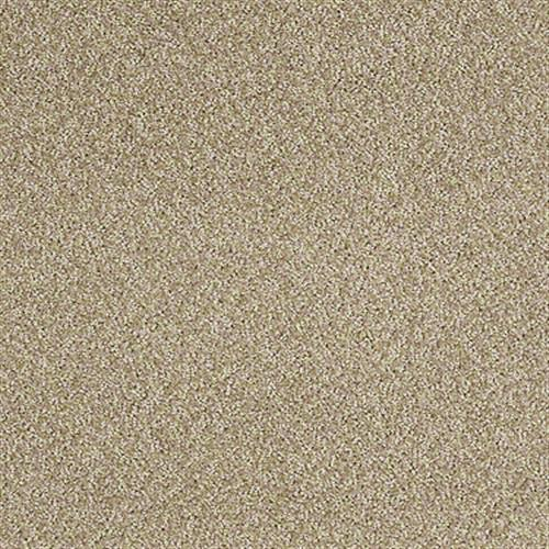Azari Sand Dollar 00731
