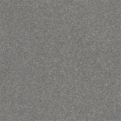 SOLIDIFY I 12 Taupe Stone 00502