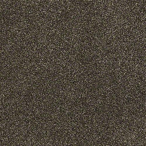 ACCOLADE II Pine Bark 00709