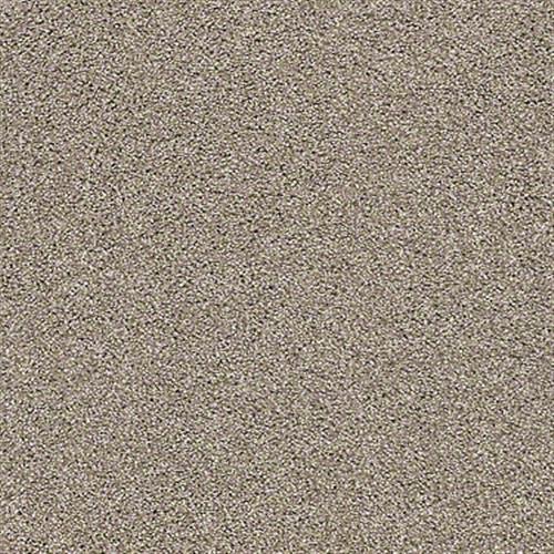 OCEAN VIEW Caribou 00756