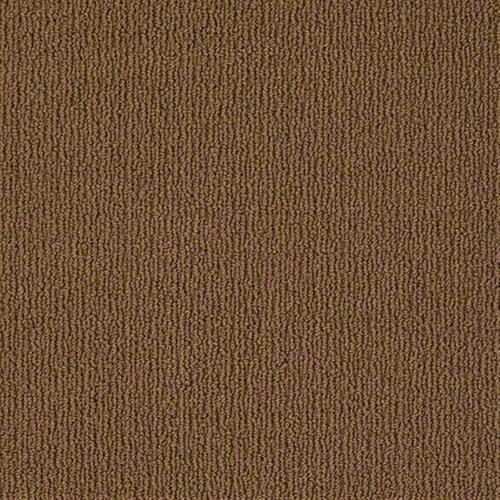 Modern Brown