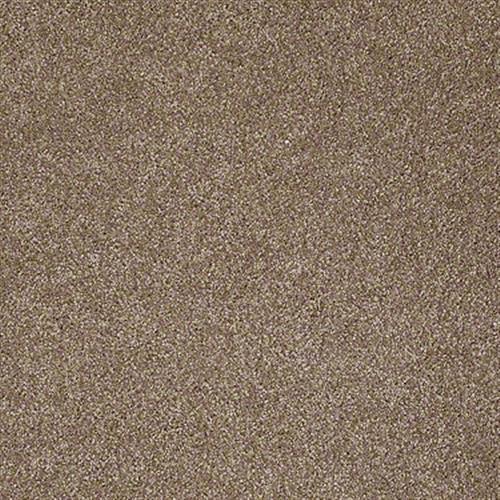 Xvn05 S Acorn 00700