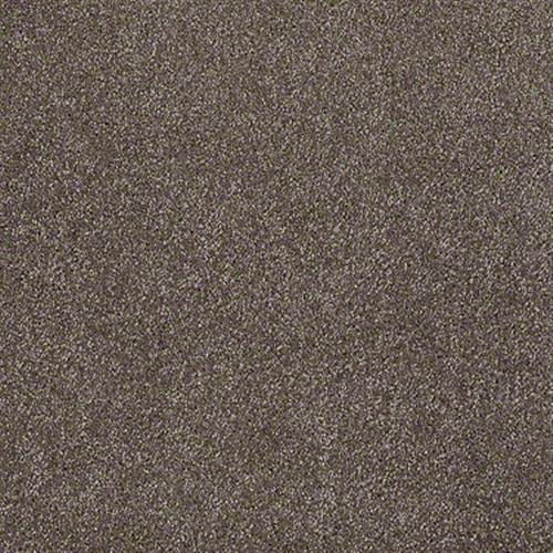 Xvn05 S Rustic Taupe 00706