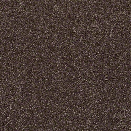 Xvn05 S Maple 00707