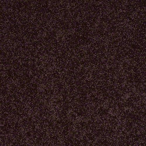 Full Court 15 Royal Purple 00902