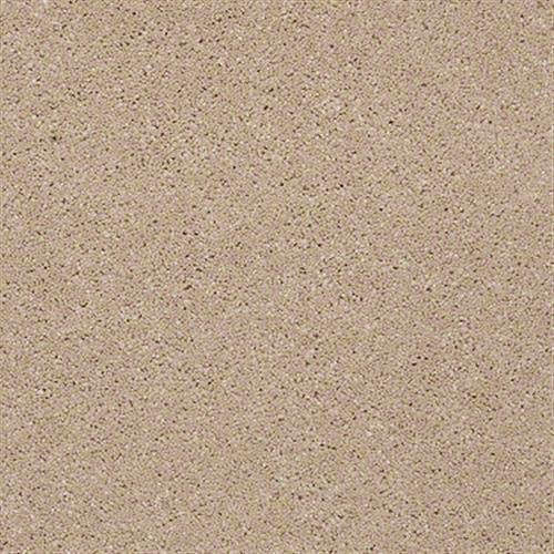 Design Texture Platinum 12 Cookie Crumb 00720