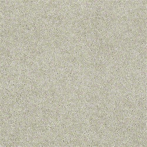 Rumson Sand Dollar 00116