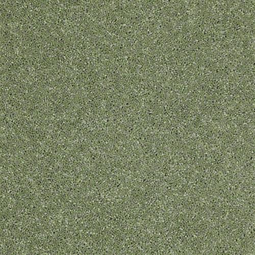 Rumson Going Green 00330