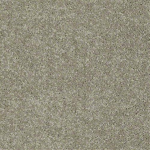 Shasta I Fossil 00761