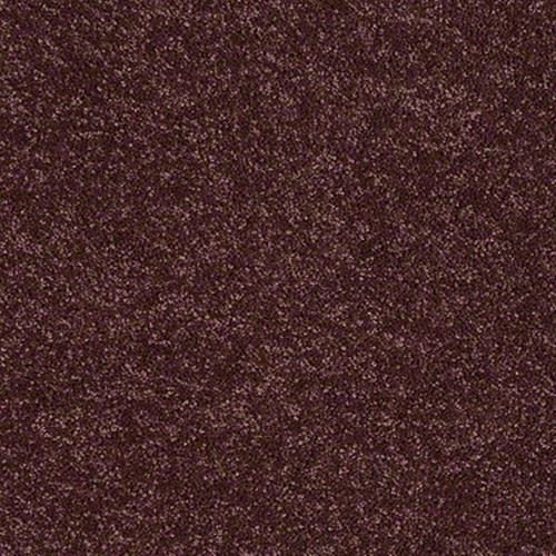 Rumson Radiant Orchid 00931