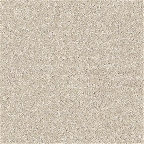 LABYRINTH Sand Dollar 00122