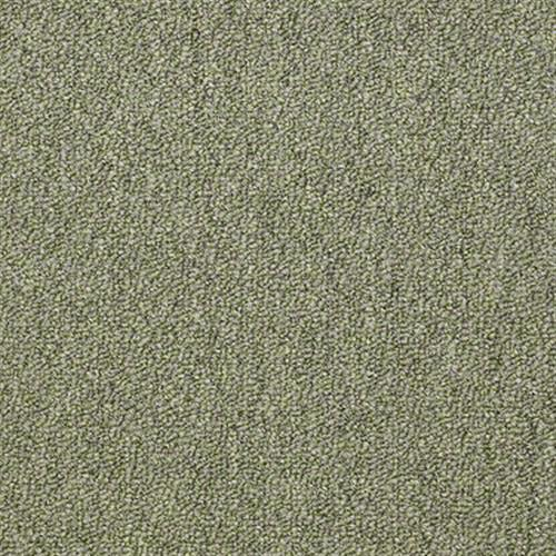Ackerman III Slc 18 Aqualite 50301