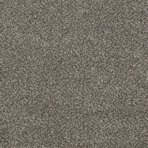 HOLLISTER Slippery Rock 00122