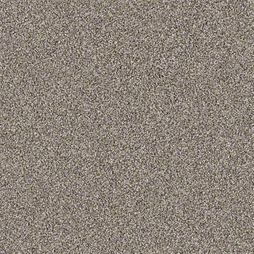 SALT CREEK BEACH Barn Wood 00104