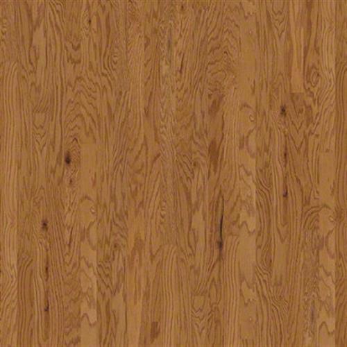 Hardwood Brighton 3 1/4 Rustic Natural 00135 main image