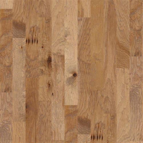 Sequoia 6 3/8 Bravo 02002