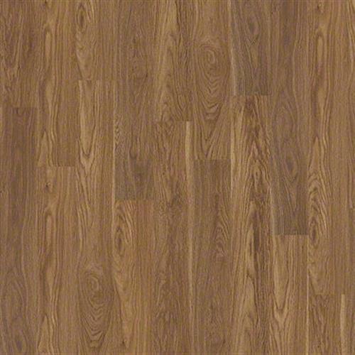 Insight Plank Kittyhawk 00678