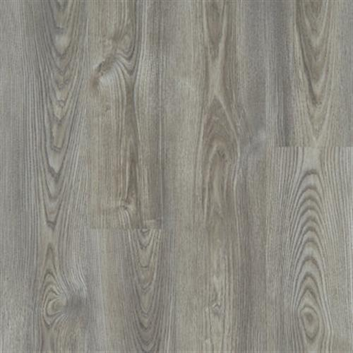 ANVIL PLUS Grey Chestnut 07062