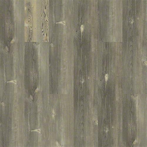 Pitch Pine