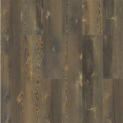 BLUE RIDGE PINE 720C HD PLUS Earthy Pine 00623