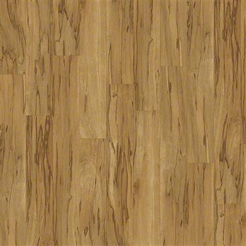 Brava in Colori - Vinyl by Shaw Flooring