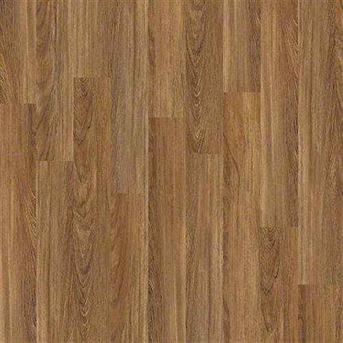 Brava in Teak - Vinyl by Shaw Flooring
