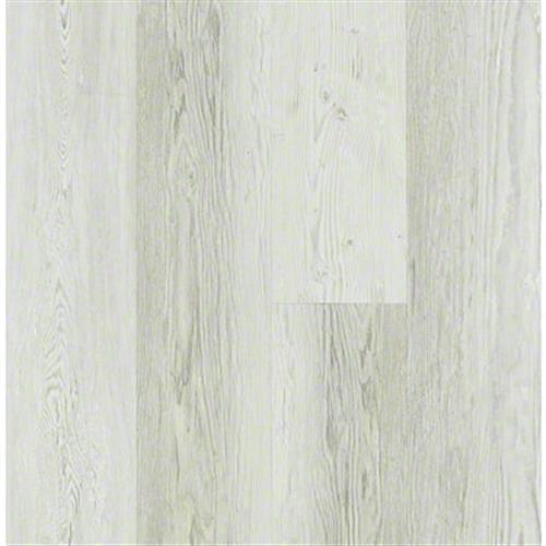 BASILICA Century Pine 00181
