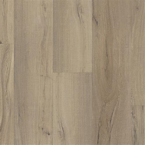 Augusta Driftwood 01056