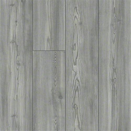 ABUNDANT 7 Foxtail Pine 05052