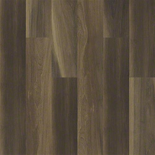 CATHEDRAL OAK 720G PLUS Ravine Oak 00798