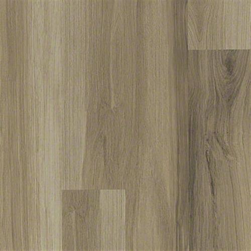 ENDURA 512G PLUS Almond Oak 00154