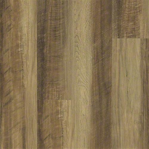 ENDURA 512G PLUS Tawny Oak 00203