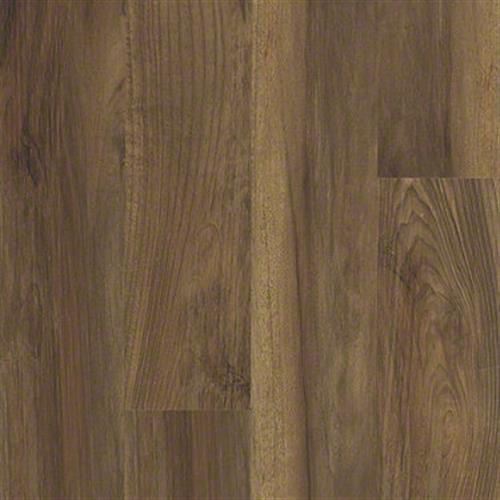 ENDURA 512G PLUS Ginger Oak 00802