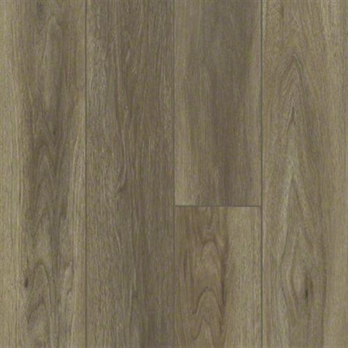 PARAGON 7 PLUS Wire Walnut 07040