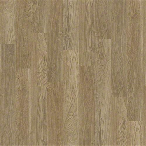 Room Scene of Alanna Springs - Vinyl by Shaw Flooring