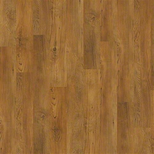 Bosk in Antique Chestnut - Vinyl by Shaw Flooring