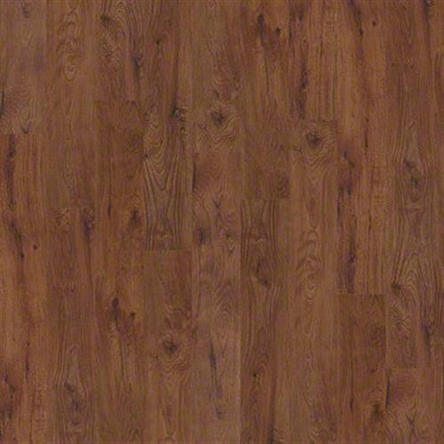 Bosk in Cherry - Vinyl by Shaw Flooring