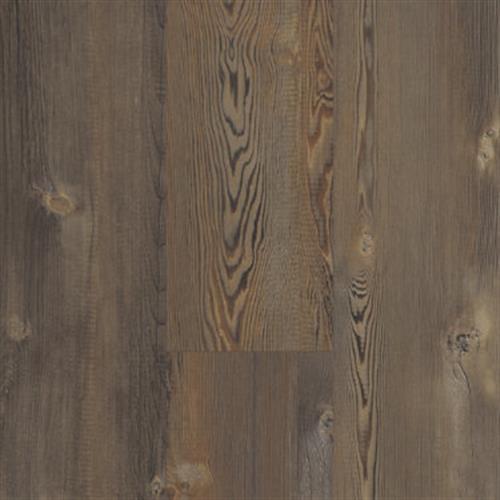 INTREPID HD PLUS Earthy Pine 00623