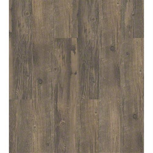 In The Park Sd in Antico - Vinyl by Shaw Flooring