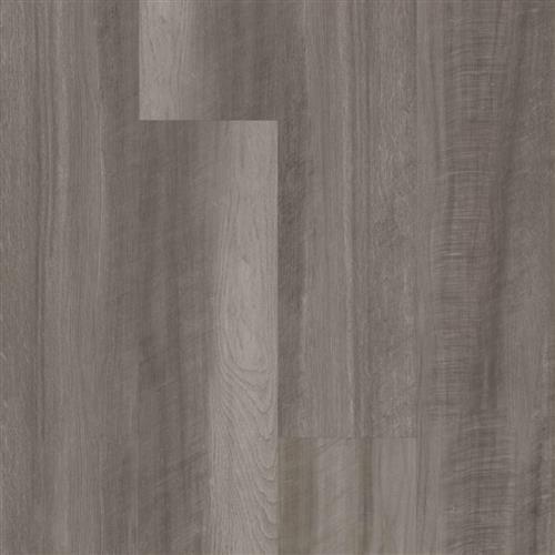 Endura Plus Oyster Oak 203