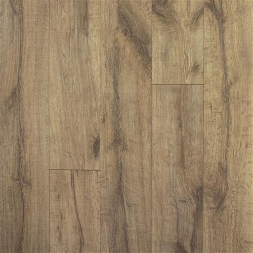 Jefferson Oak