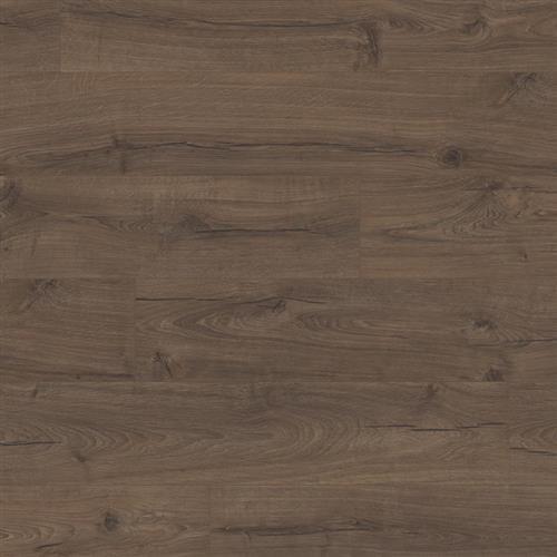 Masion Oak