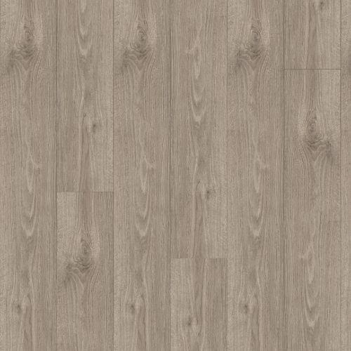 Tinsel Oak