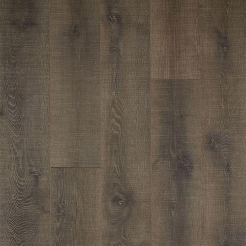 Wilson Oak
