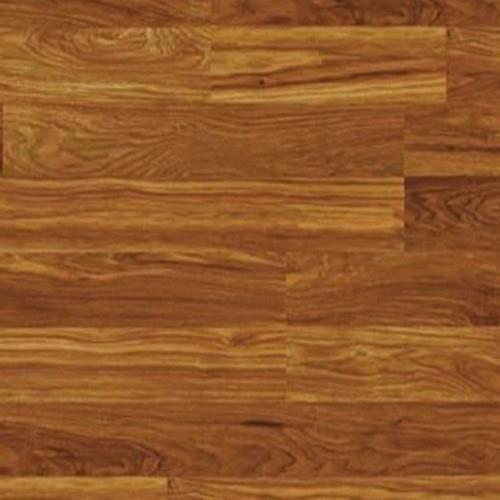 Columbia Clic Toasted Hickory 2-Strip