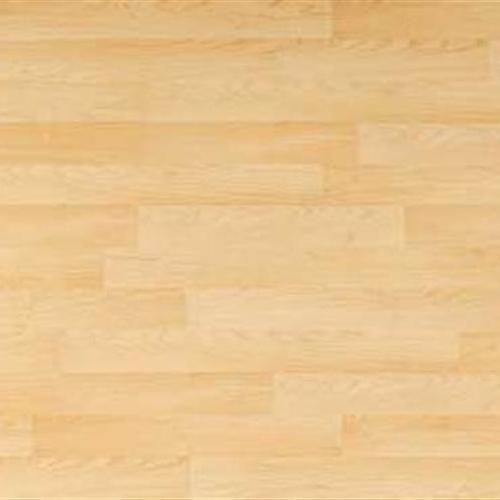 Clic Xtra Aspenwal Maple2-Strip