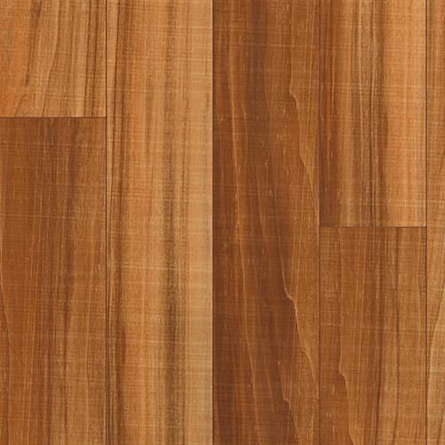 Ultima-Patagonia Red Poplar